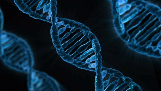 Nueva Acrópolis - Genética