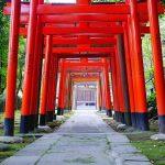 Nueva Acrópolis - Shinto