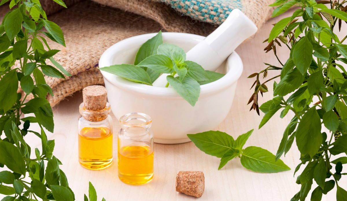 Medicina Natural. Fuente de salud – Filosofía para la vida